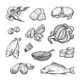 Meeresfrüchte Lokalisierte Vektorgrafik auf weißem Hintergrund Lizenzfreies Stockfoto