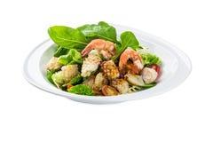 Meeresfrüchte Sarada, Salatplatte - lokalisiert auf Weiß Lizenzfreies Stockbild