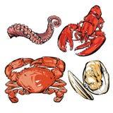 Meeresfrüchteabendessenzeichnung Hand gezeichneter Vektor Muschel mit dem Abschneiden von PA Lizenzfreies Stockbild