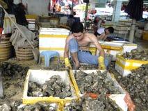 Meeresfrüchtemarkt, Fischer im Abstreifen des Austernoberteils Stockbild