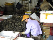Meeresfrüchtemarkt, Fischer im Abstreifen des Austernoberteils Lizenzfreies Stockfoto