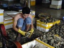 Meeresfrüchtemarkt, Fischer im Abstreifen des Austernoberteils Lizenzfreie Stockfotografie