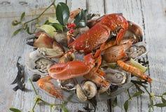 Meeresfrüchteservierplatte mit Hummer, Auster, Stockfotos