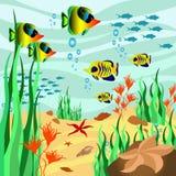 Meeresgrund stock abbildung