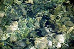 Meeresgrundhintergrund Stockfoto