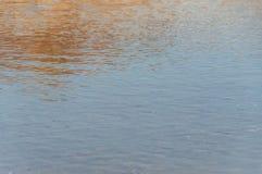Meeresgrundsand und -Muscheln unter der Schicht des Wassers auf einem heißen Sommer lizenzfreie stockfotografie