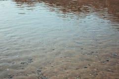 Meeresgrundsand und -Muscheln unter der Schicht des Wassers auf einem heißen Sommer lizenzfreies stockfoto