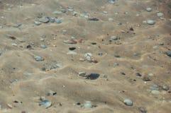 Meeresgrundsand und -Muscheln unter der Schicht des Wassers auf einem heißen Sommer stockfotos