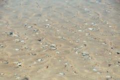 Meeresgrundsand und -Muscheln unter der Schicht des Wassers auf einem heißen Sommer stockfoto