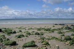 Meerespflanze bedeckte Felsen entlang Strand am Fort Victoria stockbild
