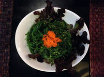 Meerespflanzen-Salat Lizenzfreies Stockbild