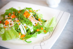 Meerespflanzen-Salat Lizenzfreie Stockbilder