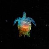 Meeresschildkröte auf nächtlichem Himmel Stockfotografie