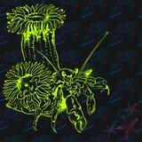 Meerestiere: Seeanemone und -krabbe auf einem nahtlosen Hintergrund Lizenzfreie Stockbilder
