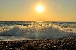 Meereswellen auf dem Schindel setzen bei dem Sonnenuntergang auf den Strand Stockbild