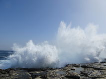 Meereswellen auf Malta Stockfoto