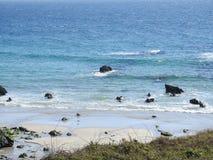 Meereswellen, die auf Felsen zerquetschen stockbilder