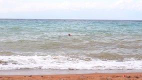 Meereswellen nahe dem Ufer stock video footage