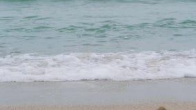 Meereswellen stoßen über dem Sandstrand am bewölkten Tag zusammen stock video footage
