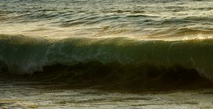 Meereswoge ungefähr zu brechen Stockfoto