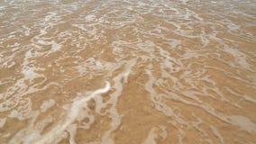 Meereswogebedeckungs-Wortliebe geschrieben in Sand auf Strand stock video footage