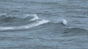 Meereswogebrechen stock video footage