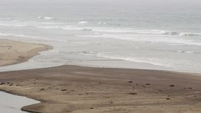 Meereswogen auf Sandstrand mit dem Strom, der in Meer fließt stock footage