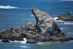 Meereswogen im Pazifischen Ozean Lizenzfreie Stockbilder
