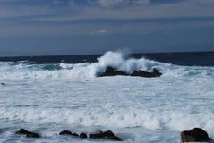 Meereswogen im Pazifischen Ozean Lizenzfreies Stockfoto