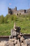 Meerkat - beneath English Castle Royalty Free Stock Photo
