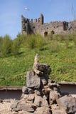 Meerkat - beneath English Castle Stock Photography