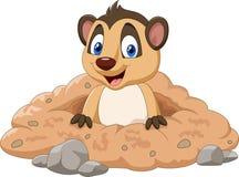 Meerkat dos desenhos animados em um furo ilustração stock