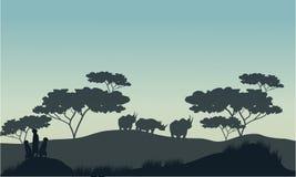 Meerkat and rhino silhouette in savannah Stock Images