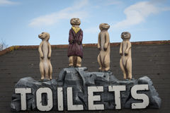 Meerkat toilet sign Royalty Free Stock Photo