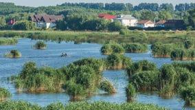 Meermening - de Deltatulcea Bestemming van Donau stock afbeeldingen