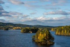 Meermening van Zweden Stock Fotografie