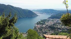 Meermening in zeer goed Zwitserland stock afbeelding