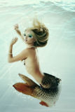 Meermin mooie onderwatermythologie die originele foto comp zijn royalty-vrije stock afbeelding