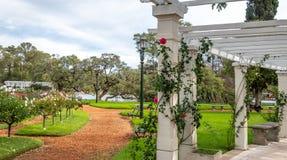 Meerpergola bij Gr Rosedal Rose Park in Bosques DE Palermo - Buenos aires, Argentinië stock afbeeldingen