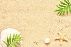 Meersand mit Starfish und Oberteilen Draufsicht mit Kopienraum lizenzfreie stockfotos