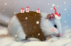 Meerschweinchen im Freien im Winter als Santa Claus Kinder gehen über diesem verrückt vektor abbildung