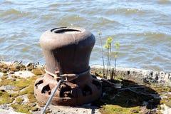Meertrosmeerpaal op de rivier Moskou Royalty-vrije Stock Afbeelding