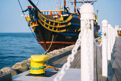 Meertrosmeerpaal op een pijler Royalty-vrije Stock Fotografie