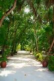 Meeru Island Stock Photo