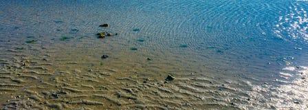 Meerwasserpfützenbeschaffenheit oder -hintergrund Lizenzfreies Stockbild
