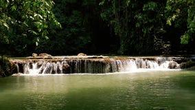 Meerwaterval in een tropische wildernis stock footage