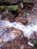 Meeslepend water Stock Afbeelding