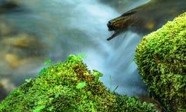 Meeslepend water in een rivier Royalty-vrije Stock Afbeeldingen