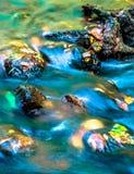 Meeslepend water over dalingsbladeren Stock Foto