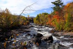 Meeslepende rivier door de herfstbos Royalty-vrije Stock Foto's